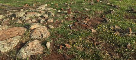 Curtin University uses new tool to examine world's oldest rocks