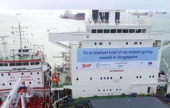 BHP investigates biofuel for shipping