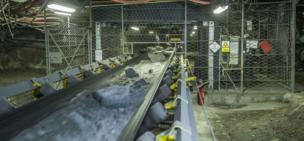 The future of mineral processing - BIOMOre