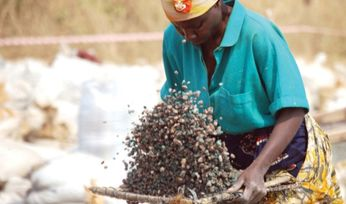 Over 40m people work in artisanal mines, finds report