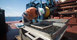 Search for deep-ocean metals reaping returns